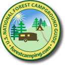 Forest Camping