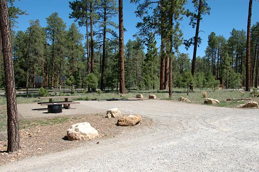 Site at Jacob Lake campground