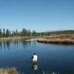 Some Fishing Spots in National Forests