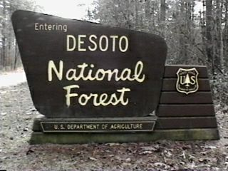 Desoto National Forest Campgrounds