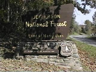Thomas Jefferson national forest