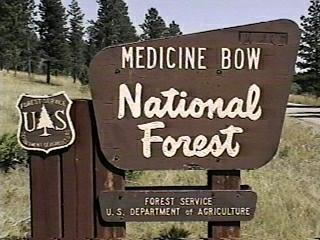 Medicine Bow National Forest Campgrounds - Us forest campgrounds map