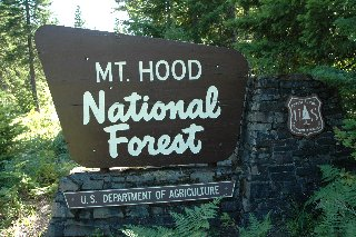 Mt Hood National Forest Campgrounds