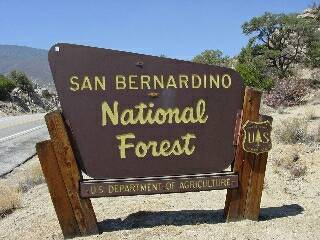 San Bernardino National Forest Campgrounds