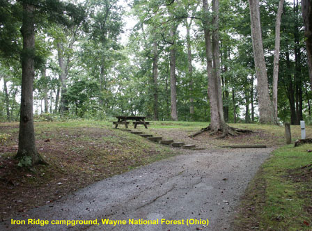 Campground Directory And National Forest Campgrounds - Us forest campgrounds map